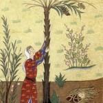 220px-Maryam