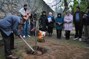 Tu bishvat 2012 planting a tree