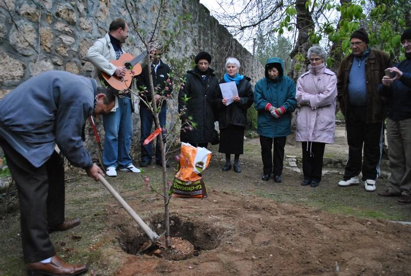Tu bishvat 2012 planting tree
